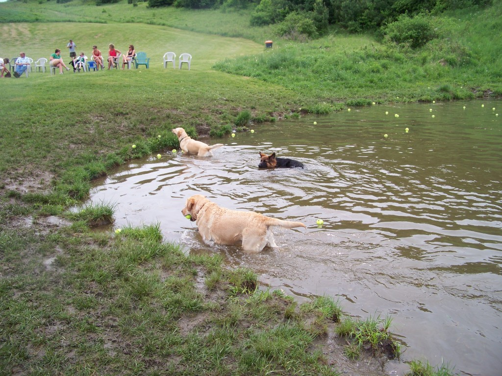Swimming at Dog Mountain