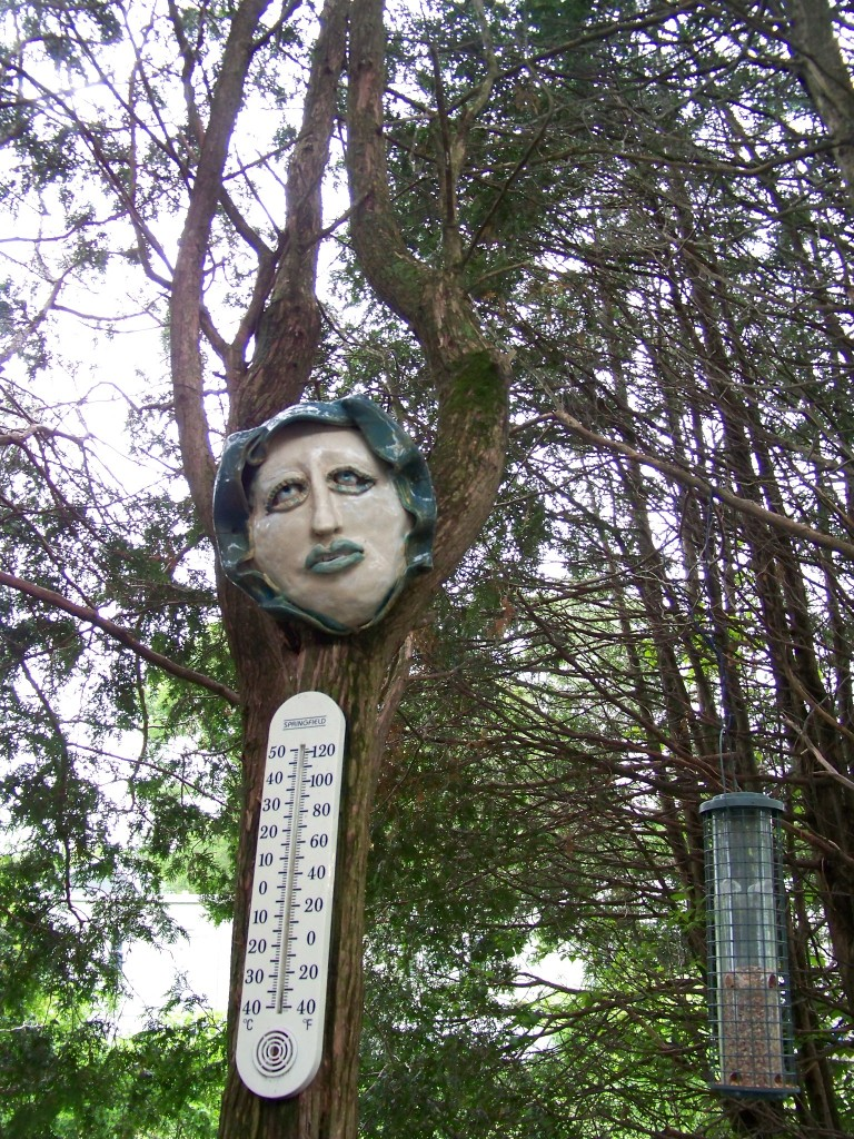 Art in the garden- Face