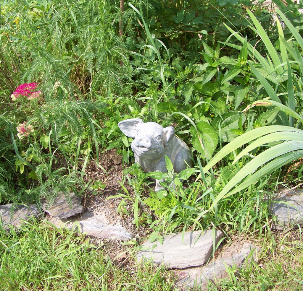 Art in the garden -pig
