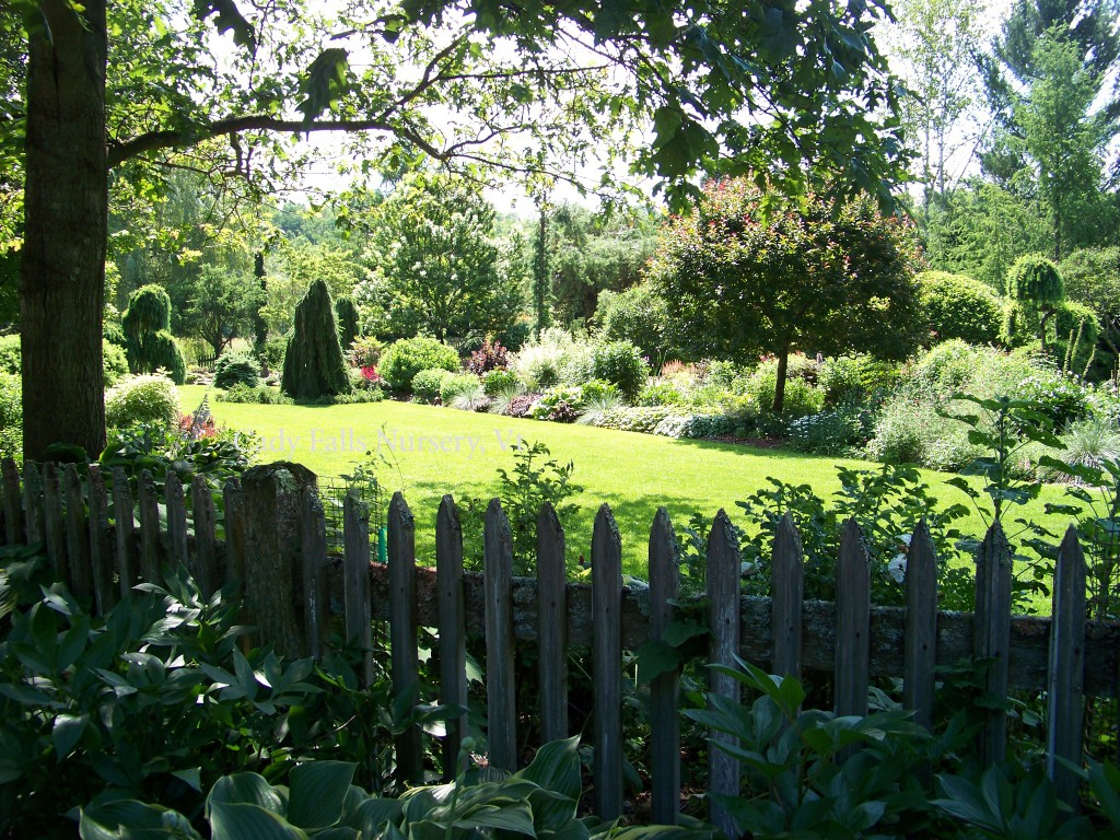 Cady Falls Nursery-Entrance Lawn