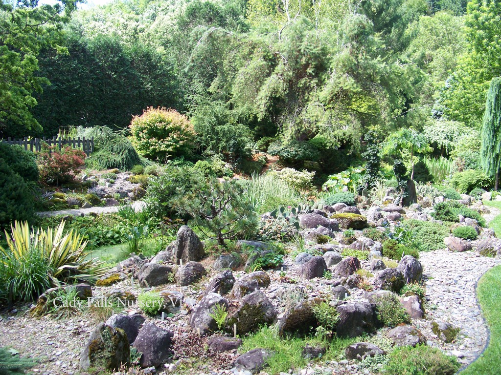Cady Falls Nursery-Rock Garden