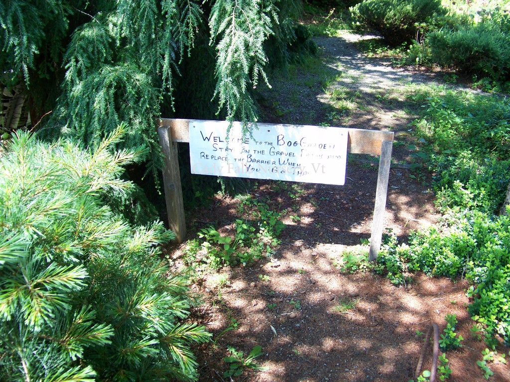 Cady Falls Nursey-Entrance to the Bog Garden